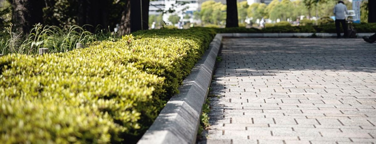 jardim de condomínio jardineiro paisagista