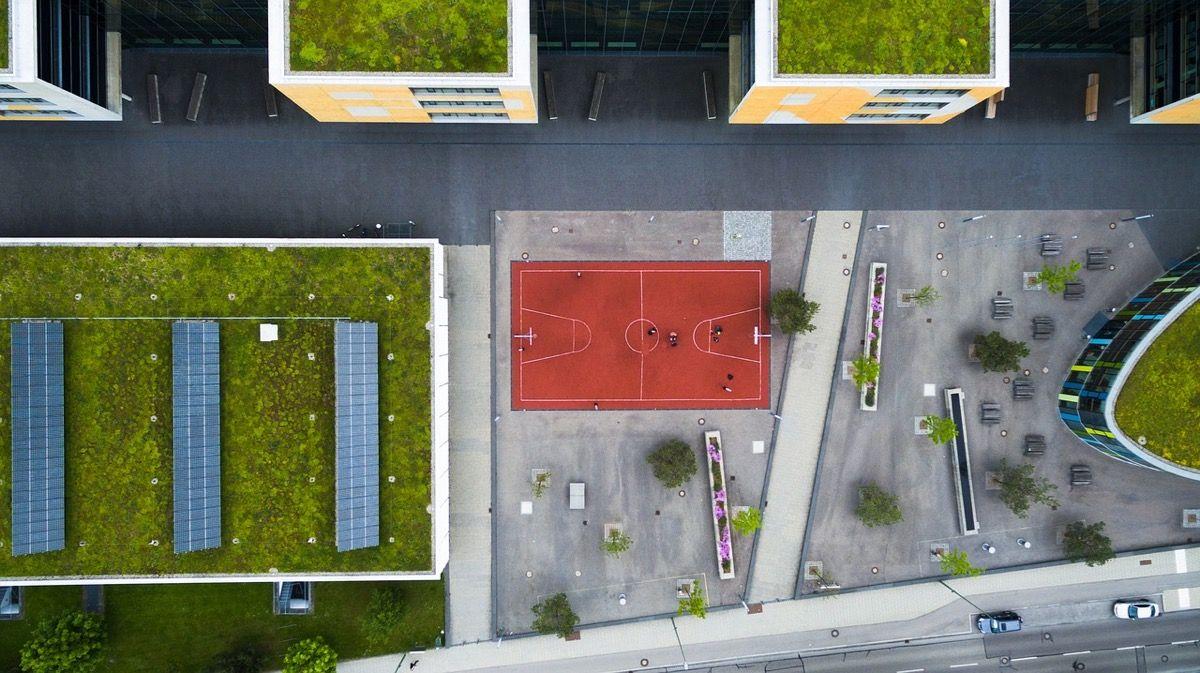 vantagens e desvantagens do telhado verde