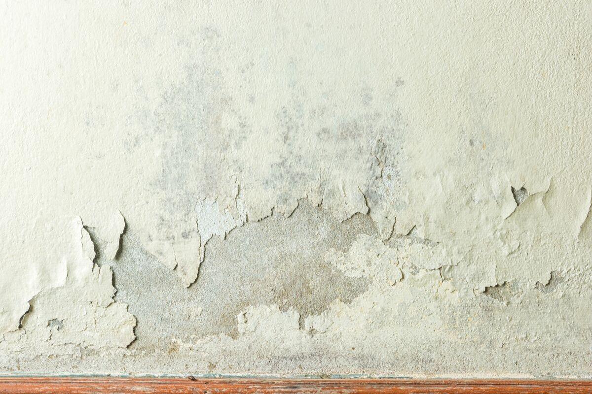 umidade no rodapé da parede em apartamento
