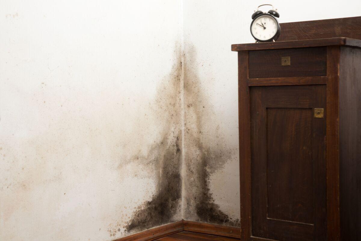 umidade no rodapé da parede