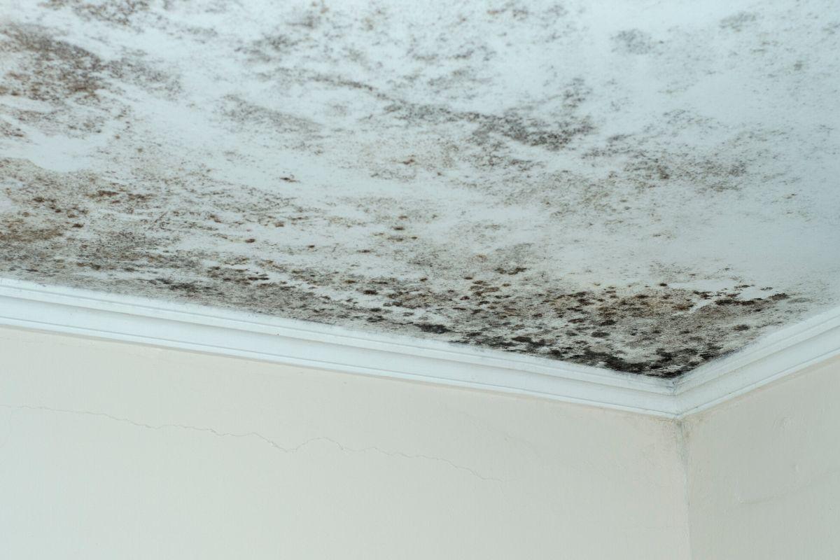 como impermeabilizar teto